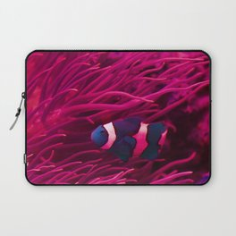 Inverse Clownfish in the current Laptop Sleeve