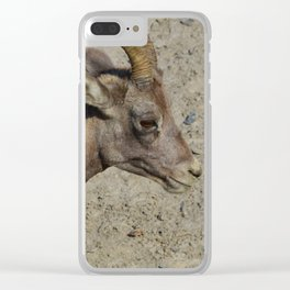 Big horn sheep couple in Jasper National Park Clear iPhone Case