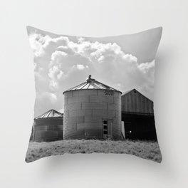 Silo Farm Photograph Throw Pillow