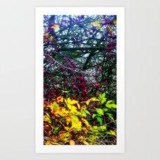 Berry Nice  Art Print