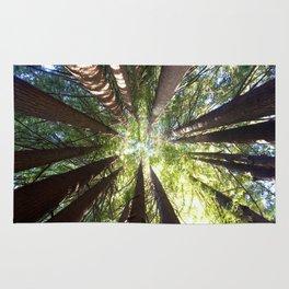 Humboldt California Redwood Trees Rug