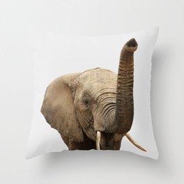 Elephant Photo, Safari Animal, Throw Pillow