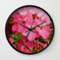 Pink Geranuims Wall Clock