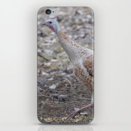 A Different Sort of Turkey iPhone Skin