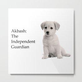 Akbash Metal Print