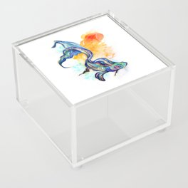 In Streams Acrylic Box