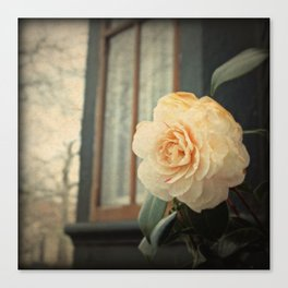 Flowers At The Abbey Canvas Print