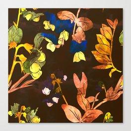 Garden vetch. Canvas Print