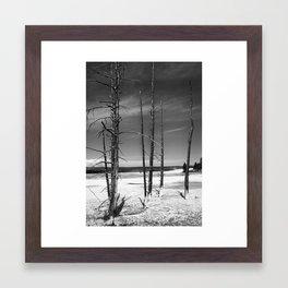 Petrified Framed Art Print