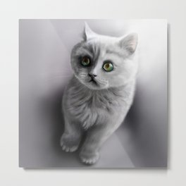 british shorthair kitten /Agat/ Metal Print