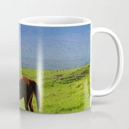 Kamuela Countryside with Mauna Kea Coffee Mug