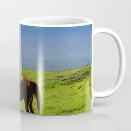 Kamuela Countryside with Mauna Kea Coffee Mug
