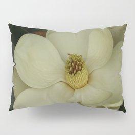 Southern Beauty Pillow Sham