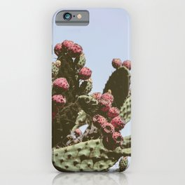 Indian Fig Tree | Nature and Landscape Photography iPhone Case
