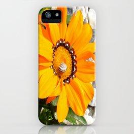 Bright Orange Gazania Flower with Snail iPhone Case