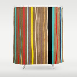 Abstract Art Colorful  Pattern Shower Curtain