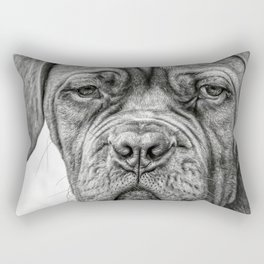 Wrinkle in Time Rectangular Pillow