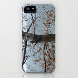 Tree trunk after a spring shower iPhone Case