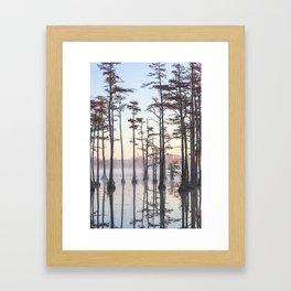 Adams Mill Pond 47 Framed Art Print