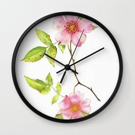 Dog Rose Watercolor Wall Clock