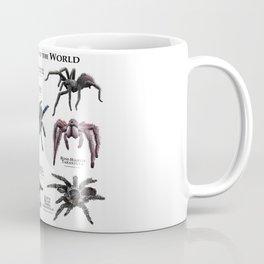 Tarantulas of the World Coffee Mug