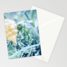 After an Autumn Rain Stationery Cards