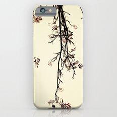 Delicate like rain iPhone 6s Slim Case