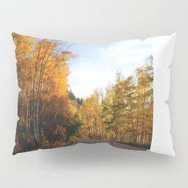 Indy In Autumn Pillow Sham