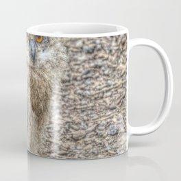Painted Baby Owl Coffee Mug