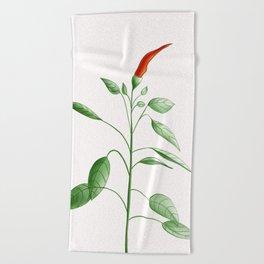 Little Hot Chili Pepper Plant Beach Towel