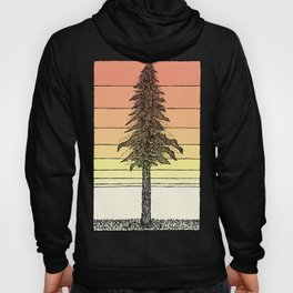 Coastal Redwood Sunset Sketch Hoody