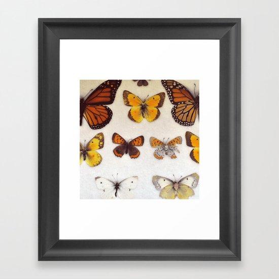 Specimin Framed Art Print