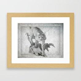Bobcat in the Woods Framed Art Print