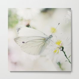 To wonderland and back butterfly Metal Print
