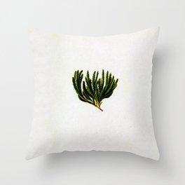 Botanical Moss Throw Pillow