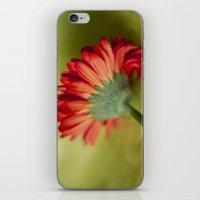 fairy tale iPhone & iPod Skins featuring Fairy Tale by Irène Sneddon
