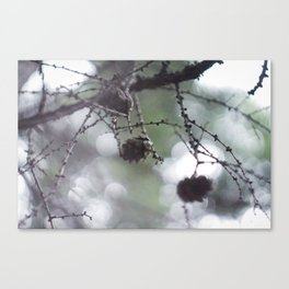 Live Forest Canvas Print