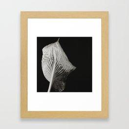 Leaf #2 Framed Art Print
