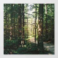 vermont Canvas Prints featuring Vermont by marisa ann
