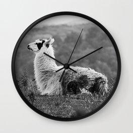 Como Te Llama Wall Clock