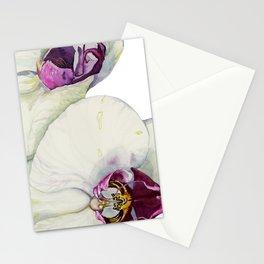 Cream & Fuchsia Phalaenopsis Orchids Stationery Cards