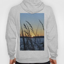 Sunset Sea Grass Hoody