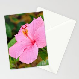 Pink Hibiscus 2 Stationery Cards