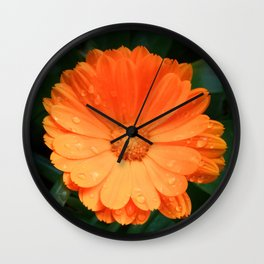 Captivating Calendula Wall Clock