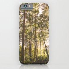 woodland 3428 iPhone 6s Slim Case