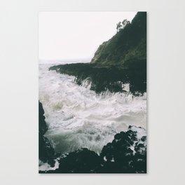 Milky. Canvas Print