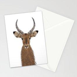 Antelope Stationery Cards