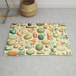Autumn Harvest // Fruits by Adolphe Millot XL 19th Century Pumpkins Science Textbook Artwork Rug
