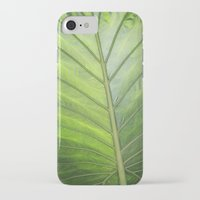 palm iPhone & iPod Cases featuring Palm by ALLY COXON
