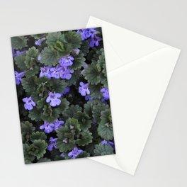 Ground Ivy Flower Stationery Cards